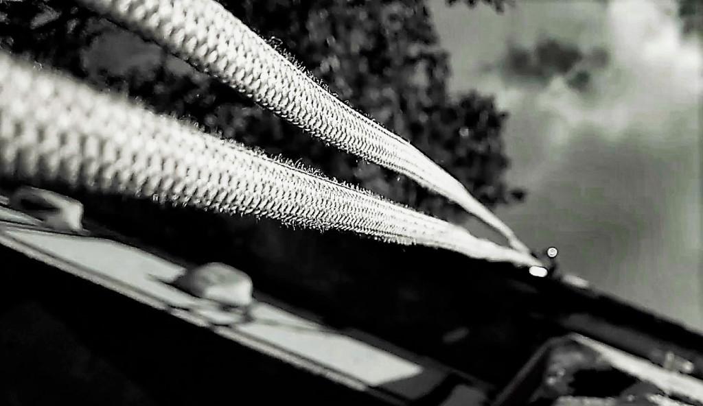 Von einer höheren Befestigung hängt ein Seil herab.